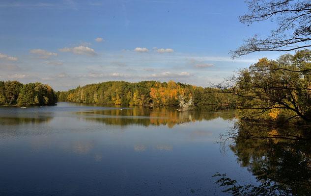 """Ein kleines Naturparadies gibt es an den """" Bong´schen Kiesgruben """" in Mainhausen."""