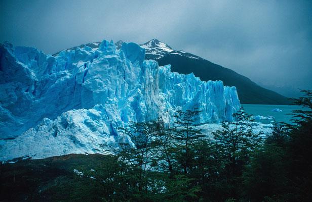Ein weiteres Highlight unsere Tour lag bei Calafate, der Perito Moreno Gletscher. Bis zu 60 Meter hoch türmt sich der Gletscher über den See.