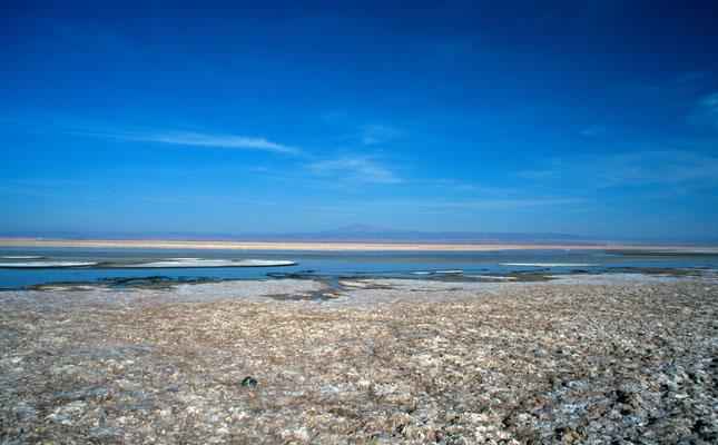 """Im Herzen des """" Salar de Atacama"""""""