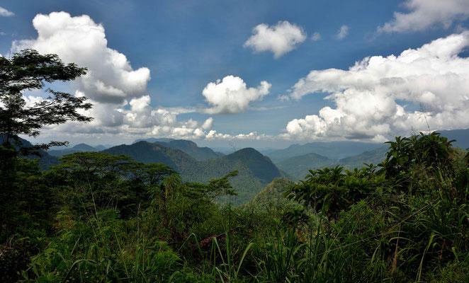 Im Hochland von Sri Lanka