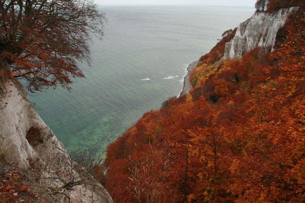 Herbst an der Kreideküste