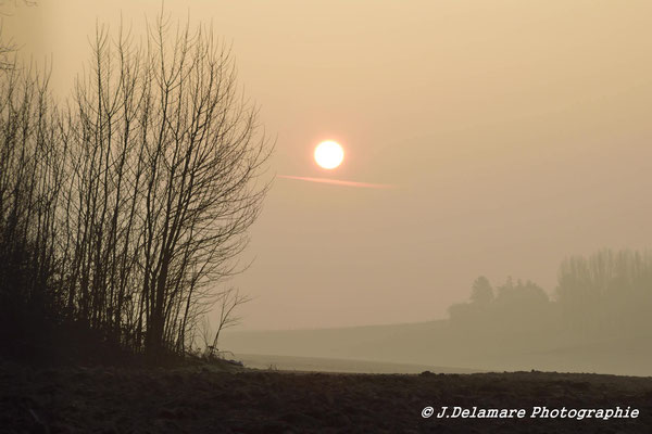 Un matin dans la Somme