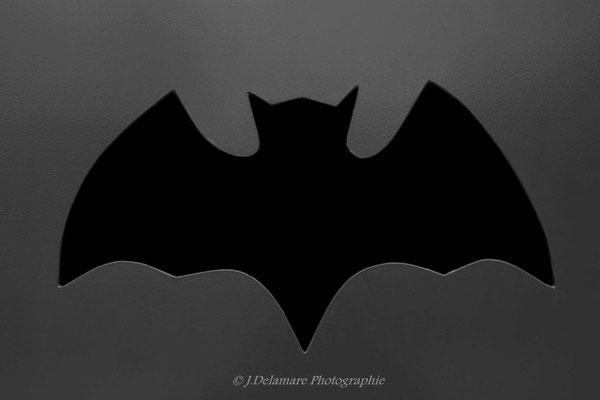 L'entrée de la Batcave