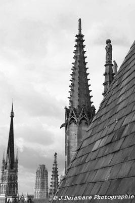 Sur les toit de Rouen