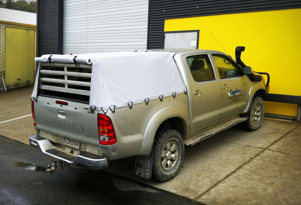 Ute Cover - Pig Dog cage, Nelson, New Zealand
