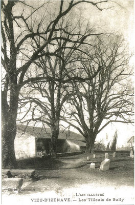 Parvis de l'église: Les 3 tilleuls et l'ancien cimetière