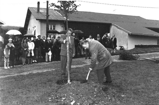 Eglise: Plantation des tilleuls pour tricentenaire du clocher en 1993