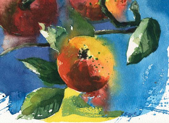 Apfelkarte neu beim Präsenzverlag