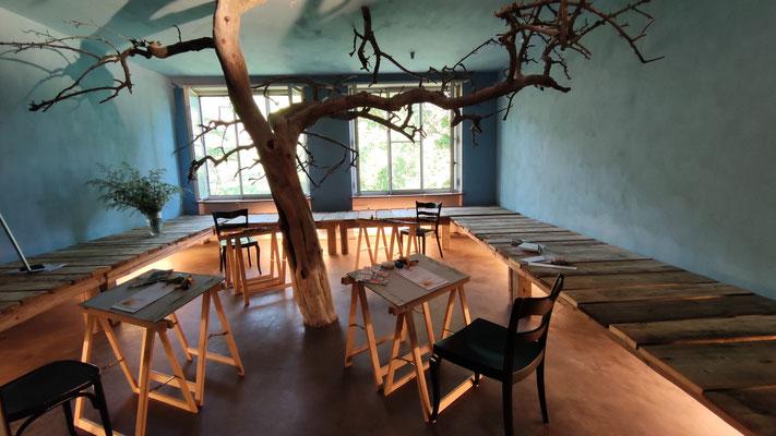Der optimale Raum für einen Lebensbaum-Workshop