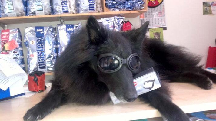 ich liebe diese Brille :-)