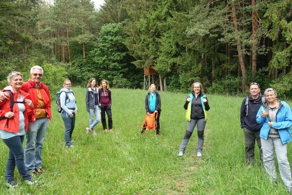 Durch Wald & über Wiesen