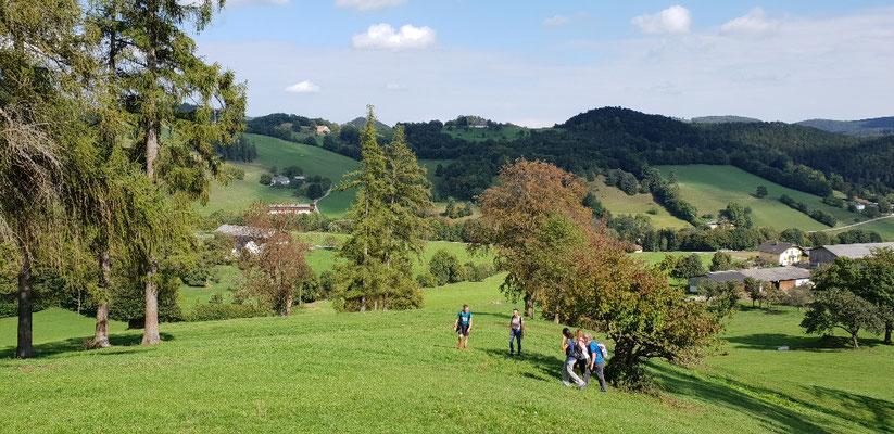 Klein Mariazell - Hafnerberg