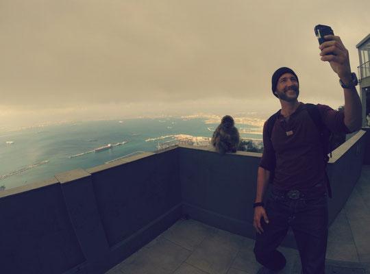 Gibraltar, Svenno und ein Affe