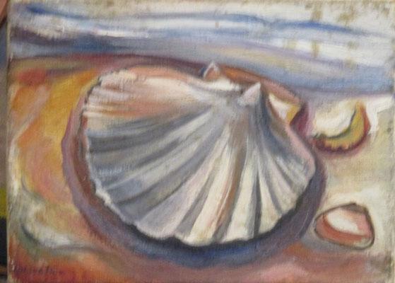 Schelp (Den Haag, 1941) olieverf, 18x24 cm