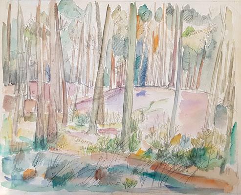 Het Bos (Laren, 1943), aquarel en Oost-Indische inkt, 46x39 cm