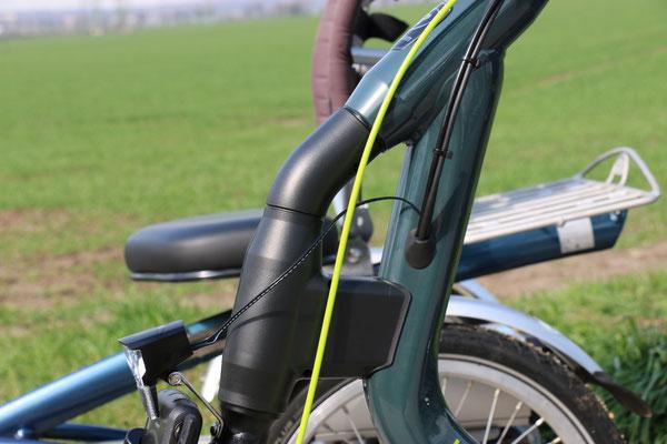 Easy Rider 3 Verkabelung von Van Raam
