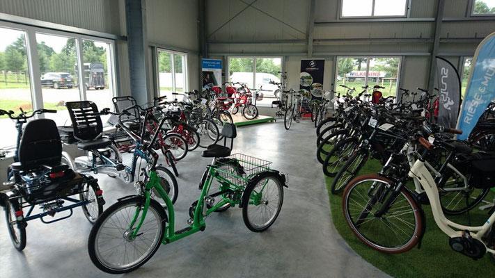Moderne und sportliche Optik der Dreiräder im Dreirad-Zentrum Bad-Zwischenahn