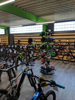 Beratung von Dreirad Experten im e-motion Dreirad-Zentrum Harz