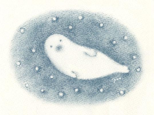 アザラシと雪