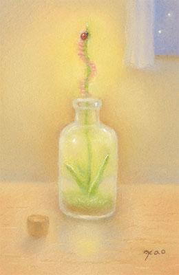 記憶の小瓶(2020.個展.春のこみち)