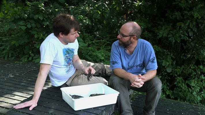 Mit Thomas Stucki, Leiter der Sektion Jagd und Fischerei des Kantons Aargau, bei den Signalkrebsen.