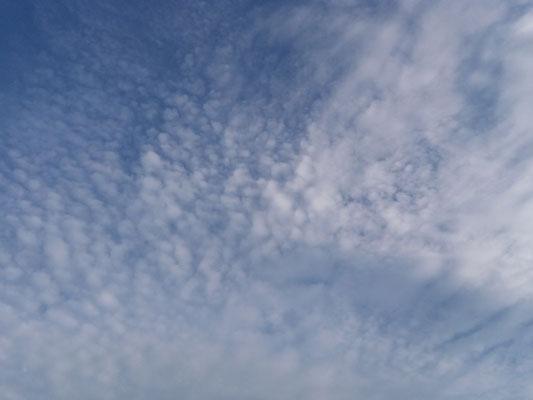 08.05 19.30 Homburg