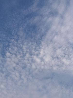 08.05 19.29 Homburg