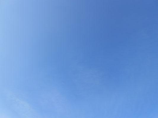 08.05 8.17 Homburg