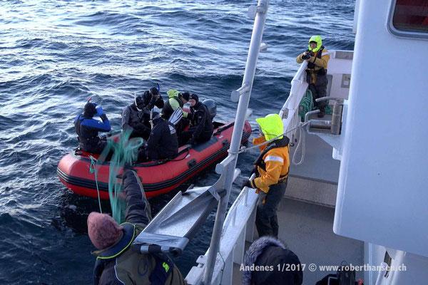 Hinaus zu den Orcas - 1/2017 © Robert Hansen