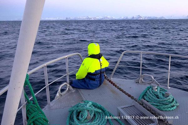 Wo sind die Orcas? - 1/2017 © Robert Hansen