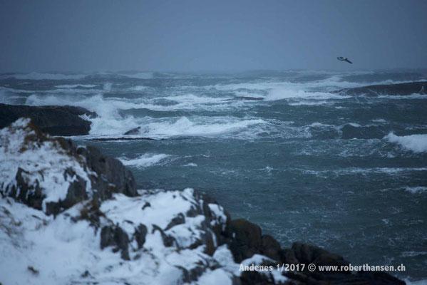 Kein Wetter für eine Bootstour - 1/2017 © Robert Hansen