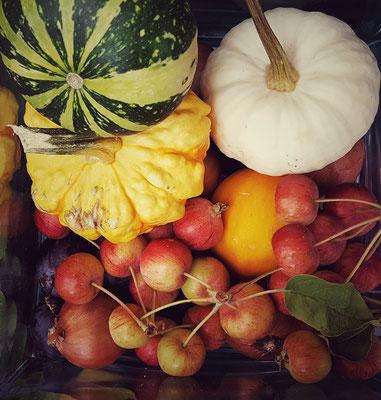 ...draußen ist gerade noch Spät-Hochsommer, drinnen hat sich der Herbst schon angekündigt...