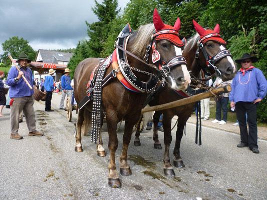 Franzi (links) und Jorett beim historischen Festumzug