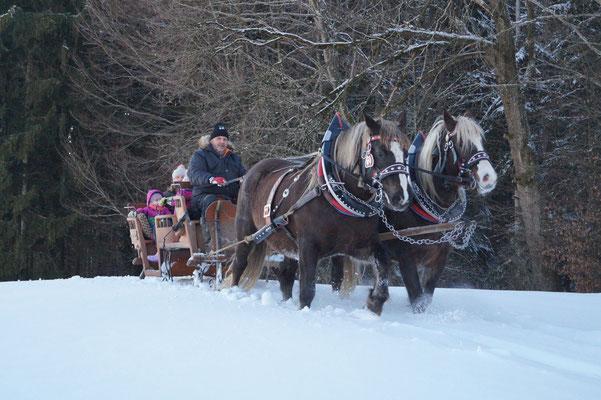 Schlittenfahrt in Immenried mit Ronja und Maxi, 24.01.21