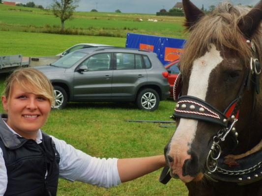 Tag des Pferdes 2013