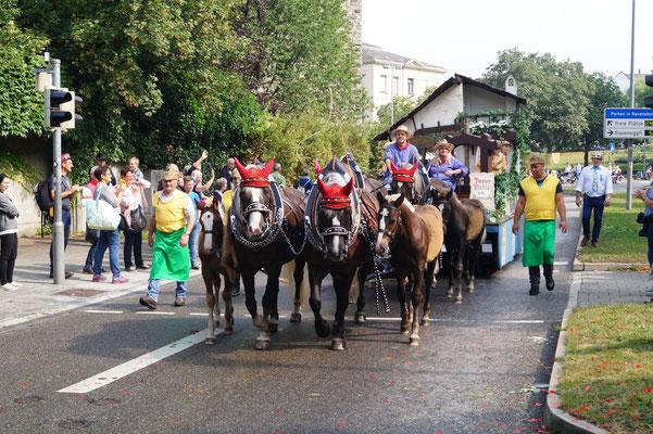 Rutenfest Ravensburg 2018, vierspännig mit drei Fohlen