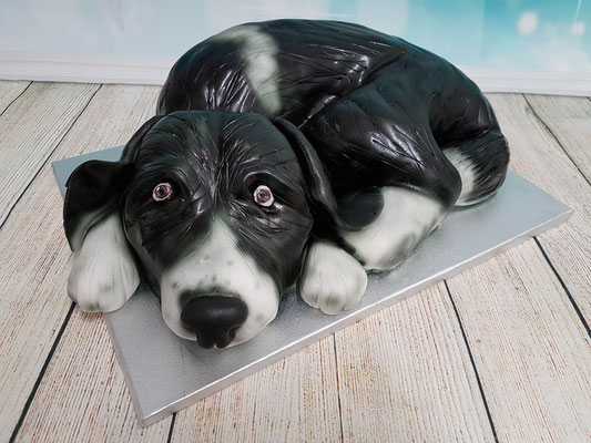 Hunde Torte Renates Torten Design Vorarlberg