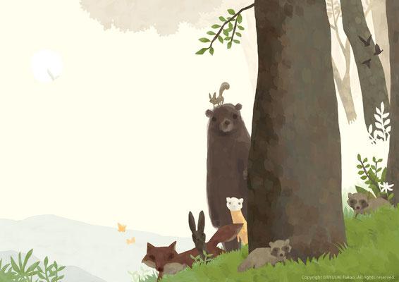僕の好きな森