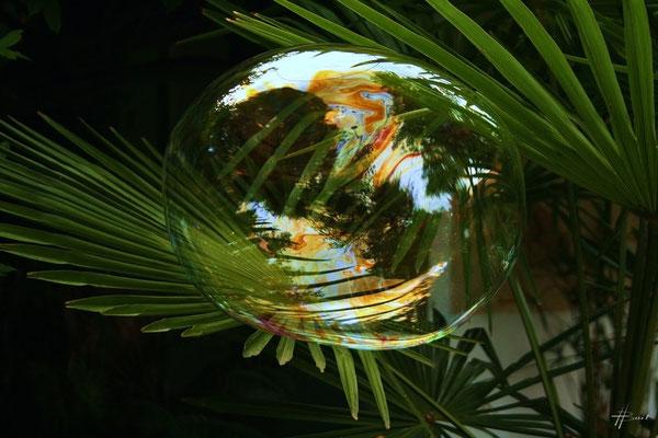 Reflet sur bulle