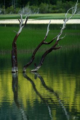 Lac des Sagnes - Photographie Patrick Boit