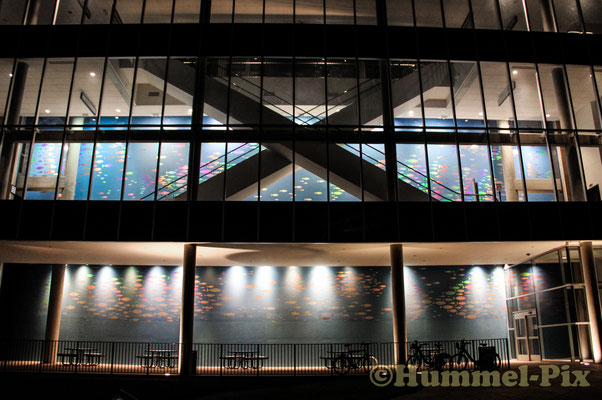 Tennessee-Aquarium bei Nacht