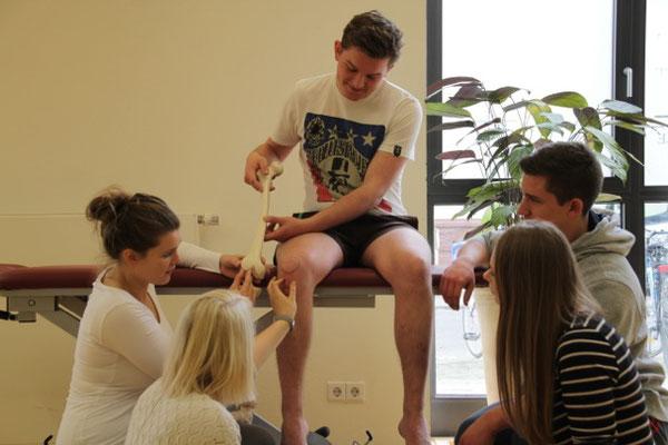 Eindrücke aus dem Anatomieunterricht mit Camilla Kapitza