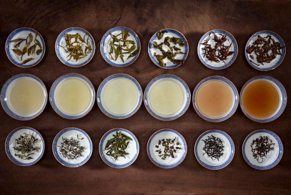 Bols de thés lors d'un atelier