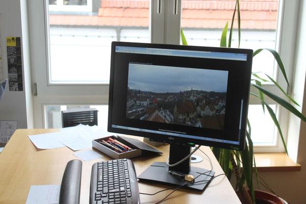 die Storchen-Webcam