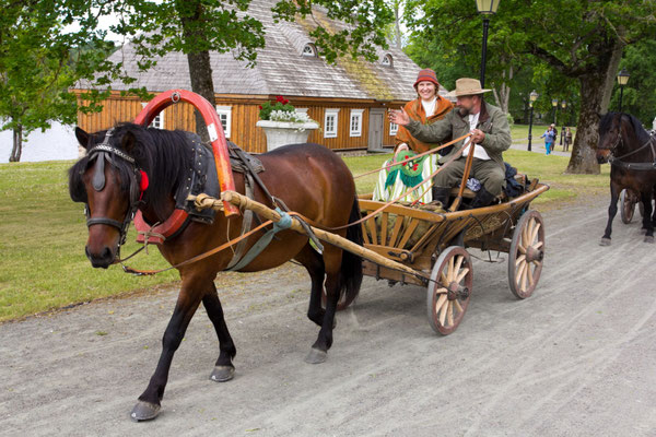 Skirmantė ir Česlovas važiuoja su Tilsitu / Foto: Kristina Stalnionytė