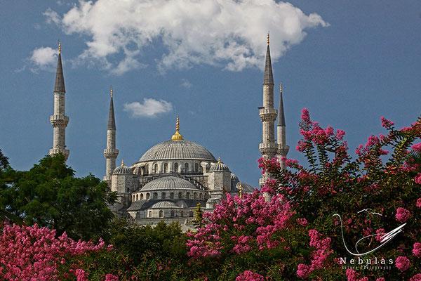 Blaue Moschee in Istanbul - Foto: Michael Milfeit