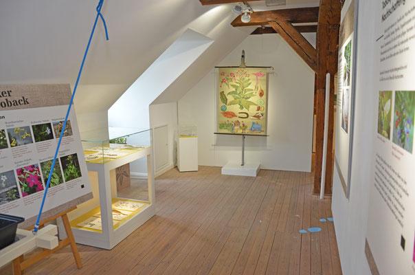 Mai 2021 – Die Sonderausstellung im Flensburger Schifffahrtsmuseum ist eröffnet.