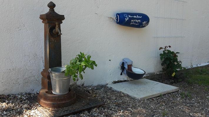 Für unsere Hundegäste eine Wasserbar