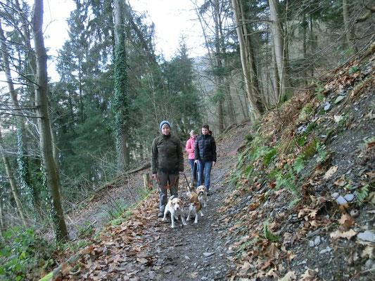 Wanderung zur Grevenburg
