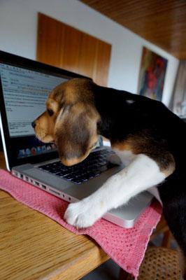 Den Laptop findet sie weiterhin PRIMA ;-)